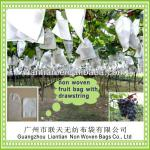 XT1044 non woven fruit cover bag grape protection bag with drawstring