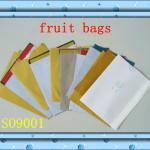 Apple Pear Peach Mango Protection Bags