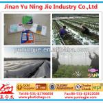cover sheet/plastic/plastic products