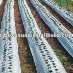 mulching film for Vegetable