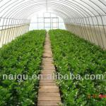 Agriculture film (best sales)-buy now