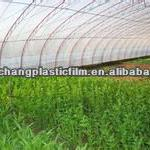 PE/LDPE/LLDPE agricultural film/greenhouse film/mulch film