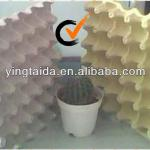 30 cells paper pulp egg tray