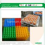 plastic egg trays for sale