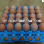 colorful egg tray /plastic egg tray/ duck tray 0086-18-5838059105