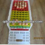 high quality colored plastic protect egg-cartons egg bin egg punnet plastic incubator transportation egg tureing tray