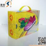 Plasitc 3D Shoe Packing Box