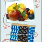 China Suplier/SGS/Corlorful/Compartment Disposable Plastic Food Tray