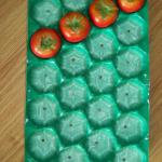 China/Many Sizes Nested Plastic Fruit Trays