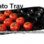 China Manufacturer PP Fruit Tray