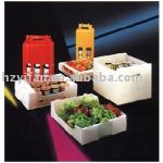 new style foldable corrugated plastic fruit vegetable box food packaging (YF7044)