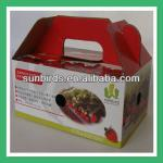 2013 Custom Strawberry Packing Paper Box