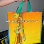 Custom reusable Printed Promotional PP Shopping bag 2013